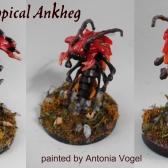 AnkhegToni2