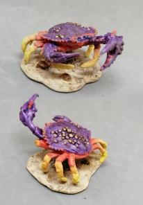 crab_toni_kl