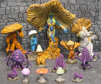 Bones Fungal Group IMG_4517JIM